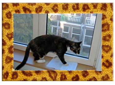 de kat bleef nog heel lang voor de deur miauwen het meisje troostte zichzelf met de gedachte dat de kat meer vet op zijn lijf had dan zij