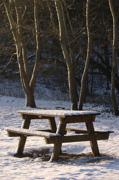 winterwandeling1