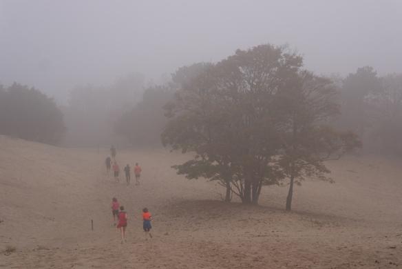 Westduinpark mist4