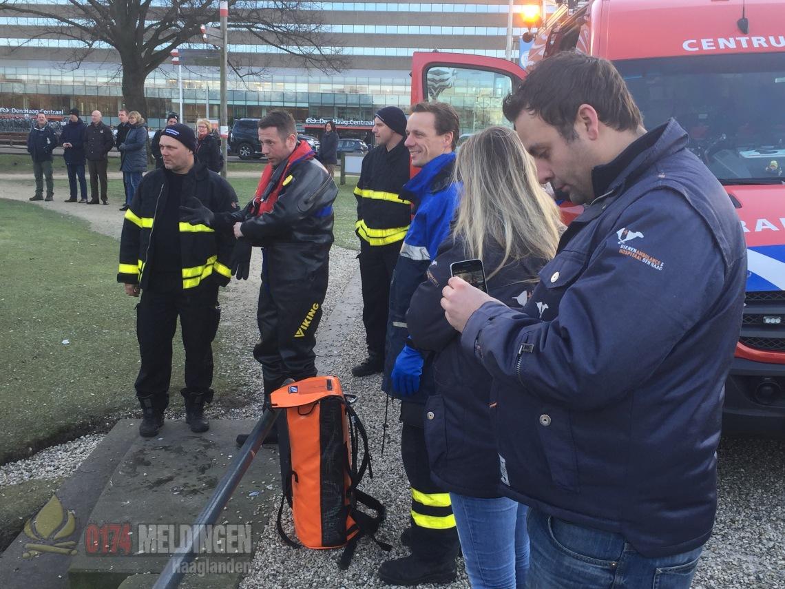 Brandweer op Koekamp Den Haag