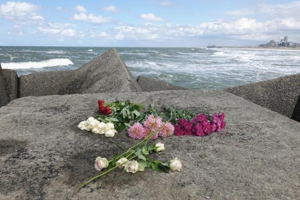 rozen op het havenhoofd van Scheveningen
